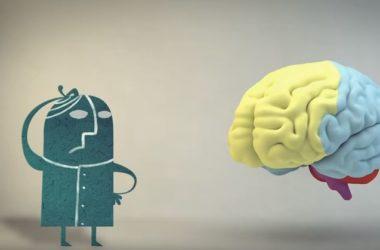 Χρησιμοποιούμε πράγματι μόλις το 10% του εγκεφάλου μας;