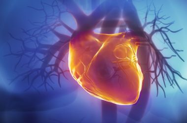 Επιστήμονες ανέστρεψαν την προχωρημένη καρδιακή ανεπάρκεια ποντικιών