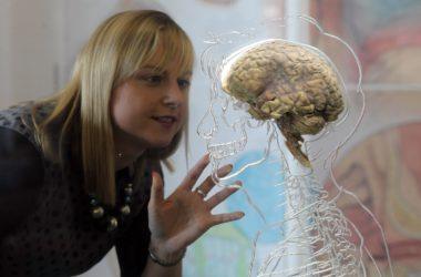 Ακολουθώντας το ταξίδι της σκέψης στον εγκέφαλο