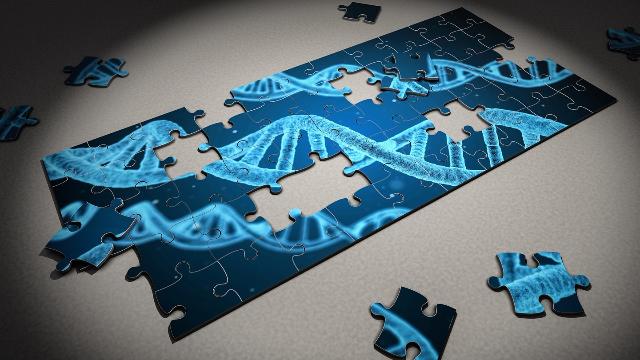Επιστήμονες συνέδεσαν γονίδια που επηρεάζουν την ανατομία του εγκεφάλου με τον αυτισμό