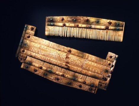 Αποκωδικοποιώντας το DNA Αλεμανών πολεμιστών του πρώιμου Μεσαίωνα