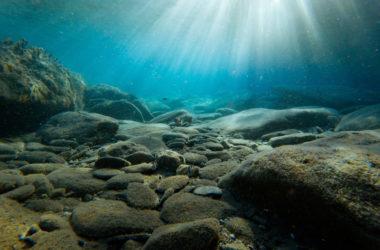 Πυθμένας της θάλασσας